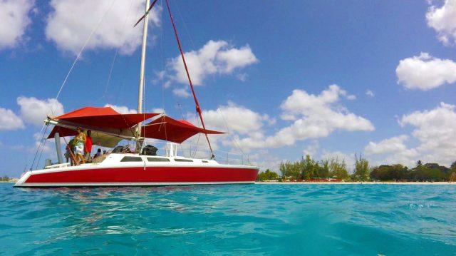 barbados catamaran turtle snorkeling excursion