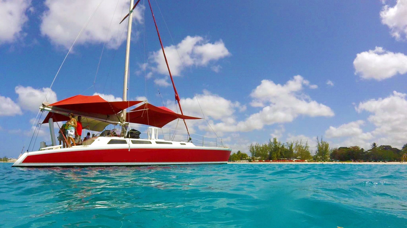 barbados catamaran turtle snorkeling excursion