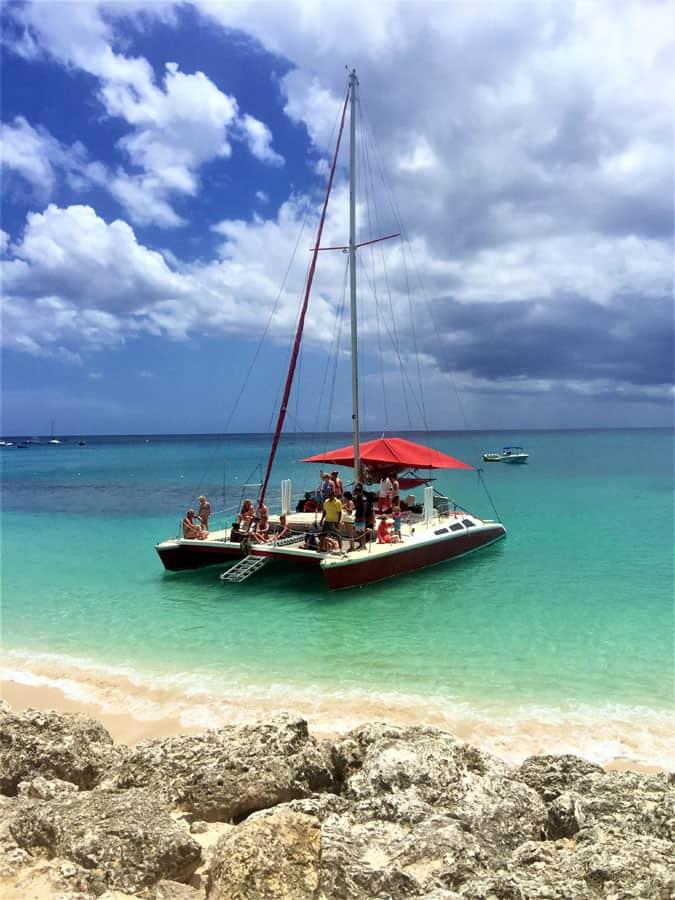 barbados turtles shipwreck snorkeling excursion