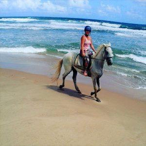 beach horseback barbados