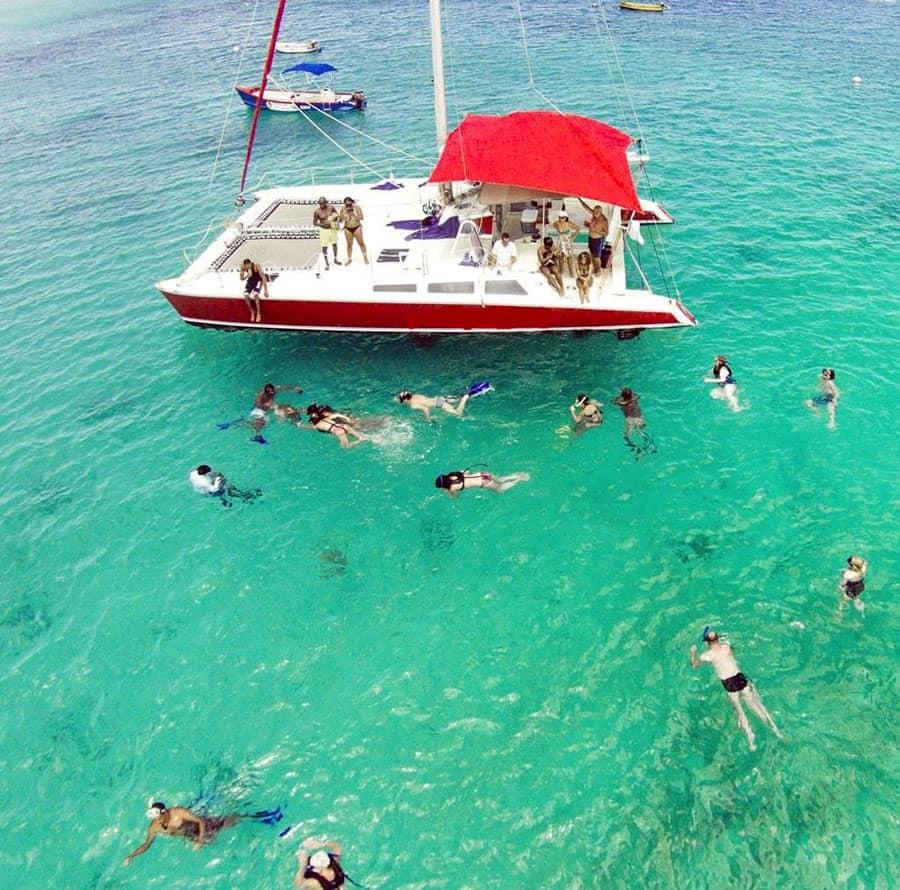 turtles snorkeling catamaran barbados