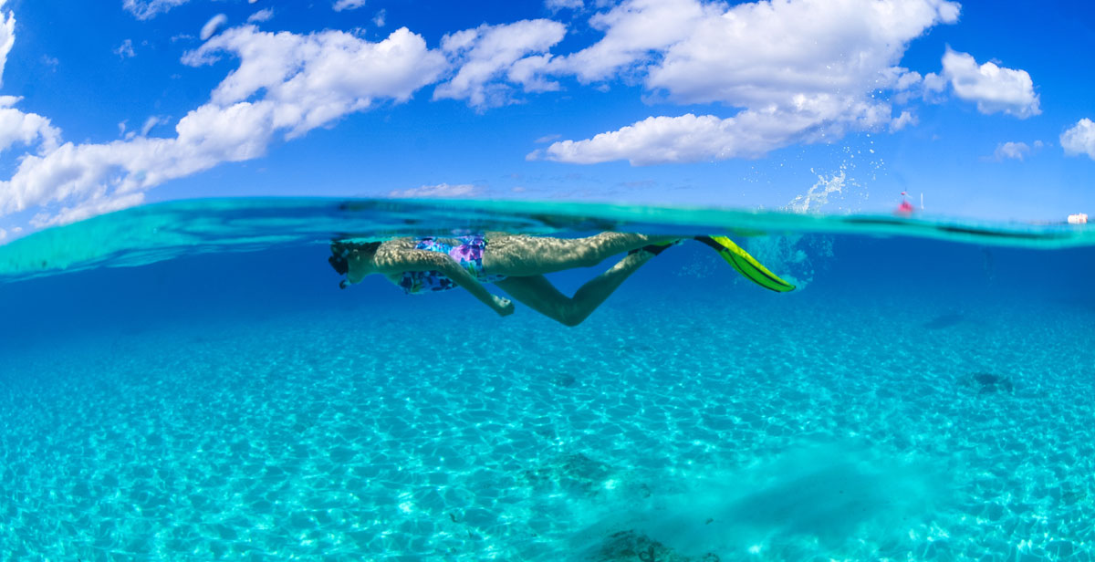 Turtle Snorkel Shipwrecks And Beach Day Barbados Cruise